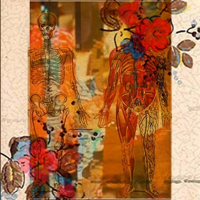 20120305120834-flora_viscera_2_12