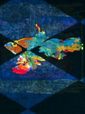 20120305121353-digital_error_fish__12_11