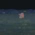Night_buoy