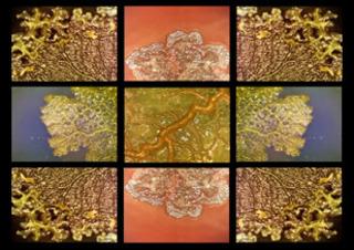 Hydraphilia (video still), Gail Wight