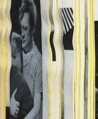 Amnesia (detail) , Erica Baum