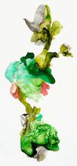 Wild Garden #1, Julie Evans