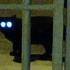 20120317055036-kitty_on_ice