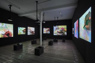 The Mapping Journey Project (2008-2011), Bouchra Khalili