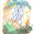 20120329022407-drawing_specimen_01