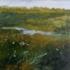 Overlooking_the_marsh