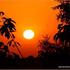 20120401125020-zalazak_sunca_i_tuje_copy