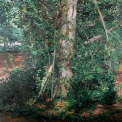 Mass (Tree), Tai-Shan Schierenberg