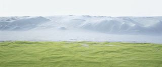 Wiese (Meadow)  , Thomas Wrede