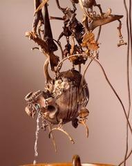 madogbones, Peter Shelton