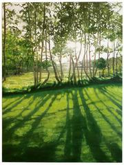 Poplar Trees, DANIEL BODNER