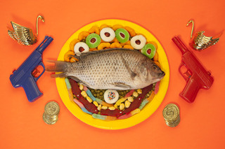 Orange Fish,Marc Horowitz