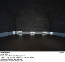 Abyss (installation at Castello di Rivoli, Turin), Doris Salcedo