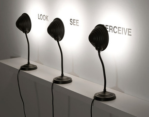 Look / See / Perceive, Antoni Muntadas
