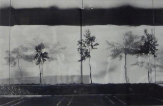 "the portfolio ""The New Industrial Parks Near Irvine, California"", Lewis Baltz"