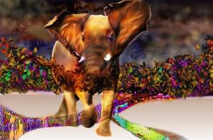 20120417012935-eleph