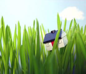 The Lawn, Lisa Dahl