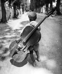 Boy with Cello, Balaton Ungarn ,Eva Besny