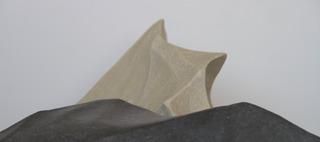 Lines in Fold, Alwar Balasubramaniam
