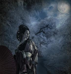 20120501034038-moonlight_on_miyuki