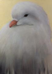 Bird, Jill Douglas