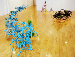 20120504005943-habits-gallery-installw