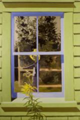 Self-Portrait in Green Window, Lois Dodd