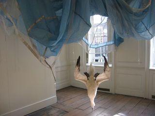 Parachute, Dorothy Cross