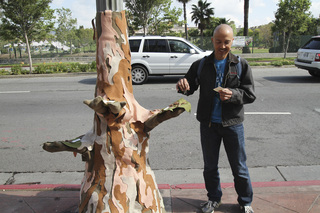 Giving Tree,Yarn Bombing Los Angeles, California Poppy Collective