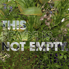 This Space is Not Empty,