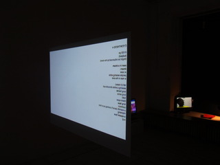 Witness(es) - installation view, Xavier Stentz