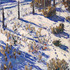 20120521223807-studio_view__sunrise_snow16x20