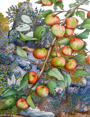 Wild Apple Branch,Michael Eade