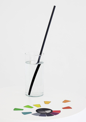 Sans titre (vase/disque chromatique),Mathieu Mercier