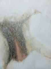 Untitled, Tim Youd