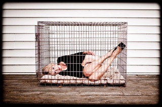 Mother in a Dog Cage, Paula Dixon