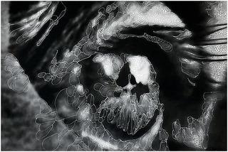 Eye #1 (detail), Sebastiaan Bremer