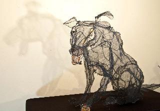 Black Dog, Jacqueline Ehle Ingelfield