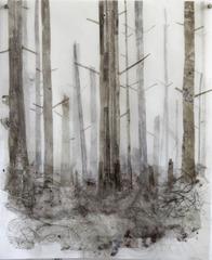 Dusty Forest, Hong Seon Jang