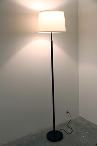 20120608163643-lamp4web