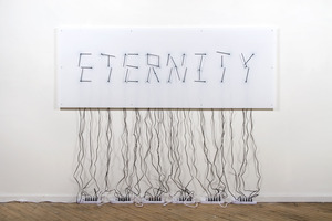 20120608211558-isea2012_alicia_eggert___mike_fleming_eternity