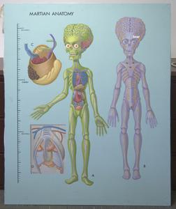 20120614204324-martian_anatomy