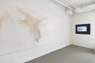 """Install shot of """"Lineamenta"""", Tim Youd, Antoine Roegiers"""