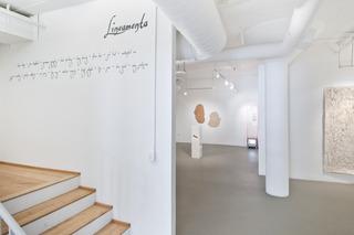 "Install shot of ""Lineamenta"", Doug Harvey, Amy Sarkisian, Nuttaphol Ma"