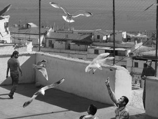 The Algiers\' Sections of A Happy Moment , David Claerbout