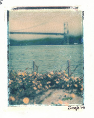 Golden Gate and Flowerstif, Danja Critchell