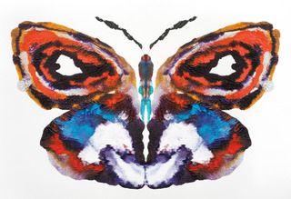 About Face: 99 Butterfly Paintings No.1, Rob Craigie