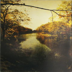 Misty River, Dorothy Simpson Krause