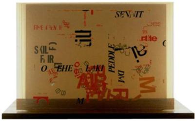 20120707095927-cageplexigram2_300w