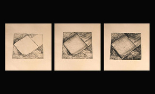 Transition part I, II, III, Diana Furlong